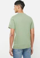 Levi's® - Graphic crew neck americana tee - green