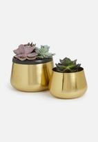 Sixth Floor - Bulbus planter set of 2 - gold