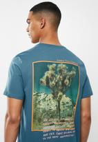 The North Face - Short sleeve graphic tee - blue