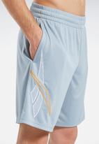 Reebok - Soccer shorts - grey