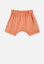Cotton On - Mikko short - dust storm wash