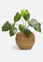 Sixth Floor - Banjar basket planter - natural