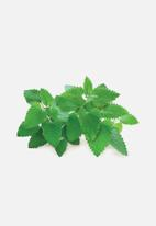 Click and Grow - Catnip - 3 pack