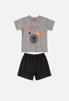 Bee Loop - Boys printed T-shirt & shorts set - grey & black