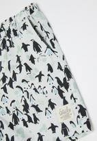 Sticky Fudge - Boys penguin shorts - multi