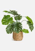 Silk By Design - Philodendron leaf plant in pot - green
