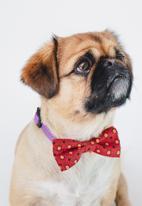 Urban Hound Social - Bow-wow-tie - red shweshwe