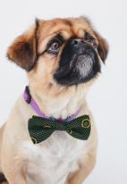 Urban Hound Social - Bow-wow-tie - green shweshwe