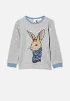 Cotton On - Noah long sleeve pyjama set - cool bunny & summer grey marle