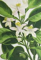 Sixth Floor - Betsy printed lampshade - green & white