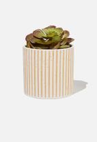 Typo - Midi shaped planter - raw & ecru stripe