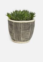 H&S - Succulent planter - black & neutral