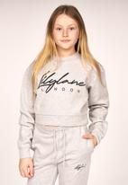 Lilylane - Pearla printed cropped sweater - grey