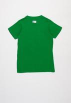 NBA - Celtics icon straight hem tee - green