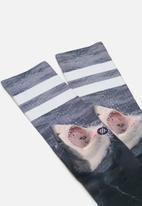 Stance Socks - Brucey ho19 - multi
