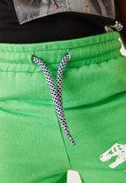 Flyersunion - 2 pack fleece short - blue & green