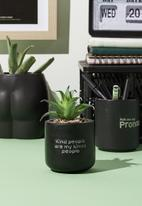 Typo - Tiny planter with plant-matte black kind people