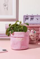 Typo - Canvas planters-root for yourself pale lilac