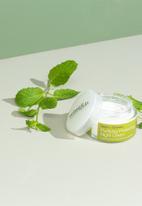 Urban Veda - Purifying Protecting Night Cream