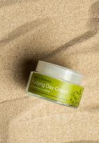 Urban Veda - Purifying Day Cream
