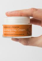 Urban Veda - Soothing Day Cream