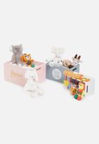 H&S - Shine bright crate set of 3 - multi