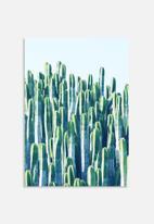 83 Oranges - Cactus V2