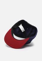 Vans - Classic cap