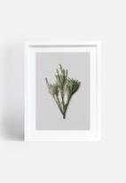 Sixth Floor - Grass