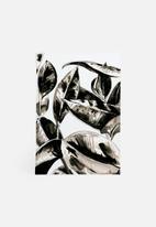 Julie Smith-Belton - Botanicals