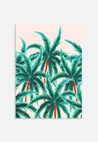 83 Oranges - Coconut trees