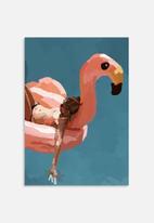 Sarah Allderman - Flamingo