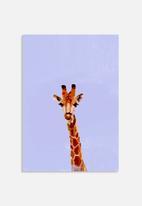 Sarah Allderman - Giraffe