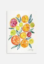 Cat Coquillette - Citrus slices