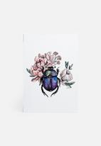Carvel - Beetle