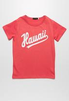 basicthread - Hawaii tee