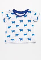 Kapas - T-Shirt