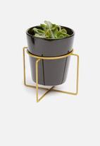 Present Time - Coy ceramic plant pot