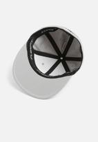 Vans - Splitz flexfit - grey