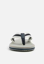 ALDO - Paywen flip flop - multi