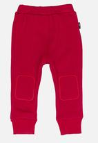POP CANDY - Velveteen joggers - red