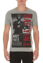 Scam - Hairy Face Tee Pale Grey