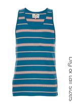 Next - Stripe Vest Blue/White