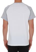 edge - Raglan T-shirt Grey