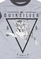 Quiksilver - Big Cat Boys T-shirt Grey