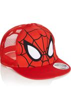 Character Fashion - Spiderman Flat Bill Cap Multi-colour