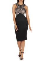 AX Paris - Boned Lace Contrast Dress Black