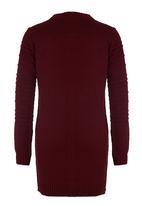 Rebel Republic - Textured Knit Dress Dark Red