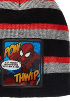 Character Fashion - Spiderman Beanie Multi-colour
