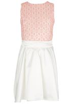 See-Saw - Mesh Combination Dress Multi-colour